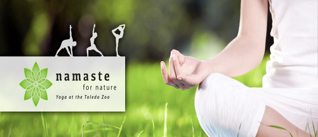 Essence Yoga & Toledo Zoo